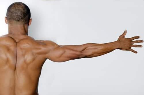 本格的なトレーニング!筋肉美の芸能人の秘密とは?