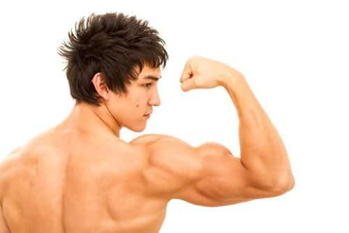 諦めないで!筋肉が付かない人の原因と対策!