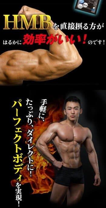 質の高い運動量と筋肉量を増やすパーフェクトボディHMBとは
