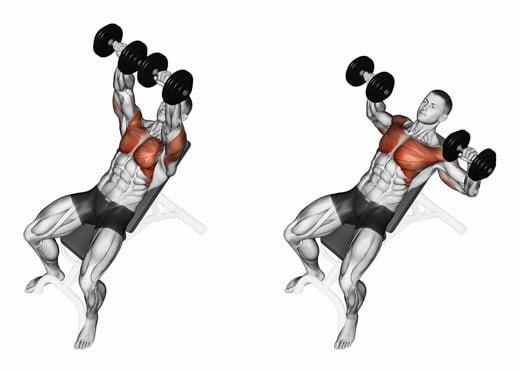筋トレは筋膜リリースと組み合わせた方が効果的