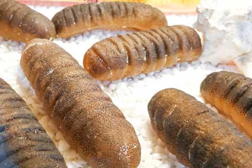 ナマコは優れた健康食材?高麗人参に匹敵するといわれることも